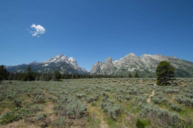 Roadtrip – Grand Tetons and Yellowstone
